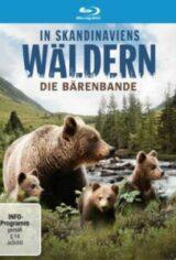 In Skandinaviens Wäldern – Die Bärenbande