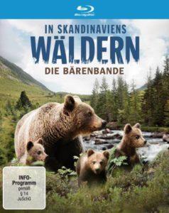 In Skandinaviens Wäldern - Die Bärenbande | © Polyband