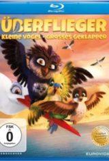 Überflieger – Kleine Vögel, großes Geklapper