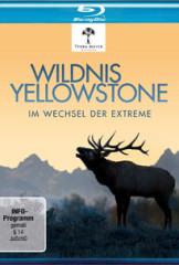 Wildnis Yellowstone
